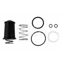 Sloan DO-32-AAN Repair Kit (for Sack Assembly & Stem)