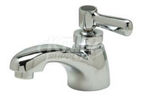 Zurn Z82701-XL AquaSpec Single Basin Faucet
