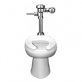 Shop for Toilet Fixtures and Parts