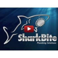 SharkBite Videos: How It Works